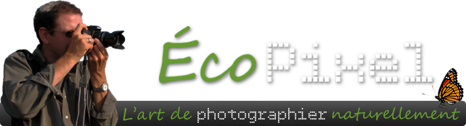 ÉcoPixel - L'art de photographier naturellement